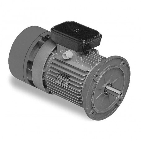 Three-phase self-braking motor 1 HP (0.75 kW) 4 poles Size 80 B5